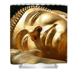 Sleeping Buddha Shower Curtain by Nola Lee Kelsey