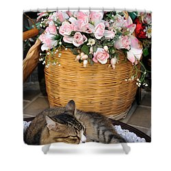 Sleeping Cat At Flower Shop Shower Curtain