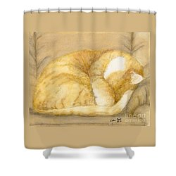 Sleeping Orange Tabby Cat Feline Animal Art Pets Shower Curtain by Cathy Peek