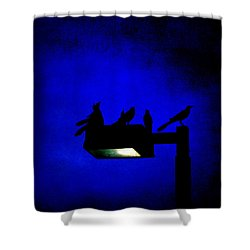 Sleepless At Midnight Shower Curtain by Trish Mistric