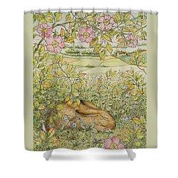 Sleepy Bunny Shower Curtain