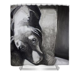 Sleepy Head Shower Curtain
