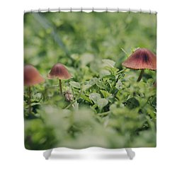 Slightly Magical Mushrooms Shower Curtain by Heather Applegate