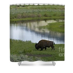 Slough Creek   #4111 Shower Curtain