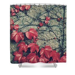 Slowly Dying Shower Curtain by Laurie Search
