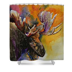 Sly Moose Shower Curtain by Beverley Harper Tinsley