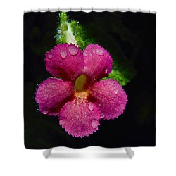 Small Beauty Shower Curtain