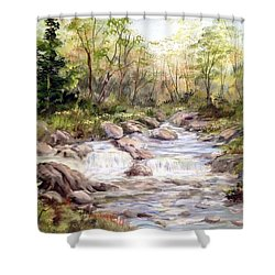 Small Falls In The Forest Shower Curtain