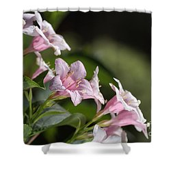 Small Flowers Shower Curtain by Joy Watson