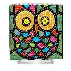 Small Quilted Owl Shower Curtain by Jim Harris