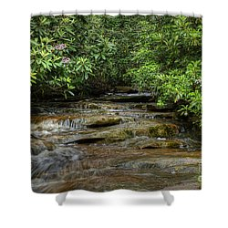 Small Stream In West Virginia With Mountain Laurel Shower Curtain by Dan Friend
