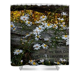 Small Treasures Shower Curtain
