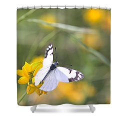 Small White Butterfly On Yellow Flower Shower Curtain by Belinda Greb