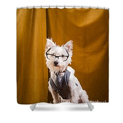 Small White Dog Wearing Glasses And Vest Shower Curtain by Edward Fielding