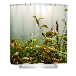 Small Wonders Of Life Shower Curtain