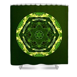 Smilabis Shower Curtain