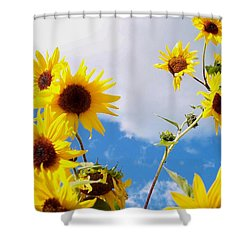 Shower Curtain featuring the photograph Smile Down On Me by Mary Wolf