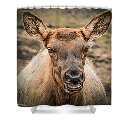 Smiling Elk Shower Curtain by LeeAnn McLaneGoetz McLaneGoetzStudioLLCcom