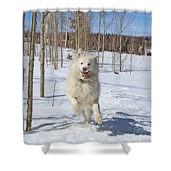 Smiling From Ear To Ear Shower Curtain