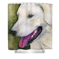 Smiling Lab Shower Curtain by Stephen Anderson