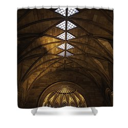 Smithsonian Castle Vaulted Ceiling Shower Curtain by Lynn Palmer