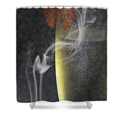 Smokey  Shower Curtain by Brian Roscorla