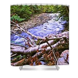 Smoky Mountain Stream Two Shower Curtain by Frozen in Time Fine Art Photography