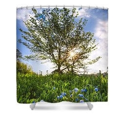 Smoky Springtime Shower Curtain by Debra and Dave Vanderlaan