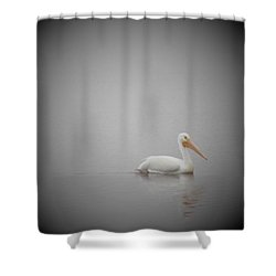 Shower Curtain featuring the photograph Smooth Glider by John Glass