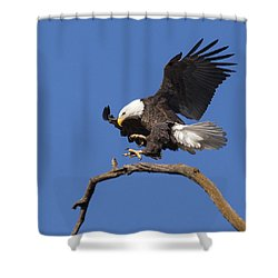 Smooth Landing 6 Shower Curtain by David Lester