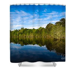 Smooth Reflection Shower Curtain