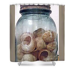 Snail Motel Shower Curtain