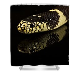 Snake Shower Curtain by Gunnar Orn Arnason