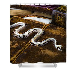 Snake Skeleton And Old Books Shower Curtain by Garry Gay
