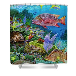 Snapper Reef Re0028 Shower Curtain by Carey Chen