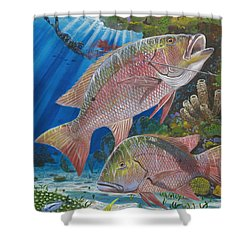 Snapper Spear Shower Curtain by Carey Chen