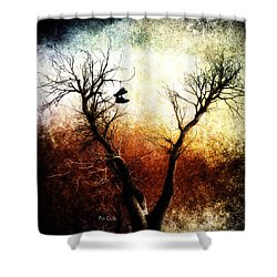 Sneakers In The Tree Shower Curtain by Bob Orsillo