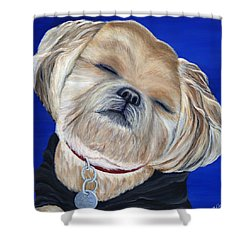 Shower Curtain featuring the painting Snickers by Michelle Joseph-Long