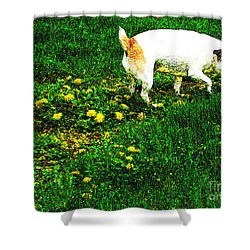 Sniffin The Dandelions Shower Curtain by Minding My  Visions by Adri and Ray