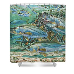 Snook Attack In0014 Shower Curtain by Carey Chen