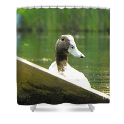 Snooping Duck Shower Curtain