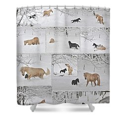 Snow Angels Paso Fino Style Shower Curtain by Patricia Keller