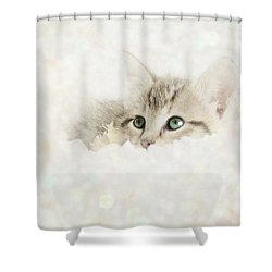 Snow Baby Shower Curtain