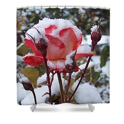 Snow Blooms Shower Curtain