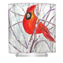 Snow Cardinal Shower Curtain by Carol Wisniewski
