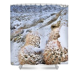 Shower Curtain featuring the photograph Snow Covered Cactus Below Mount Whitney Eastern Sierras by Dave Welling