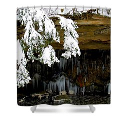 Snow Covered Pine Shower Curtain