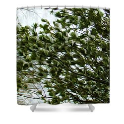 Snow Covered Pine Trees Shower Curtain by Lanjee Chee