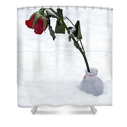 Snow-covered Rose Shower Curtain by Joana Kruse