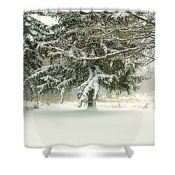 Snow-covered Trees Shower Curtain by Lars Lentz